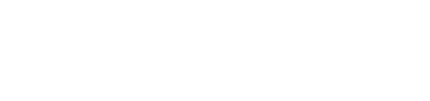Singularity Magazin